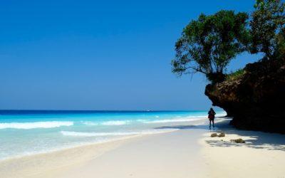 Diving on Zanzibar's amazing Mnemba Atoll
